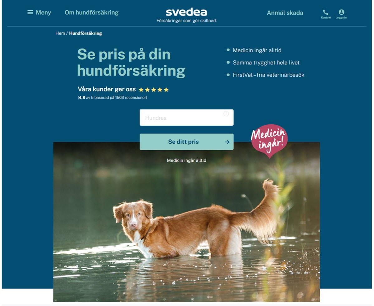 svedea hundförsäkring